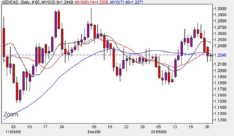 USD to CAD Daily Candle Chart - 26th January 2009