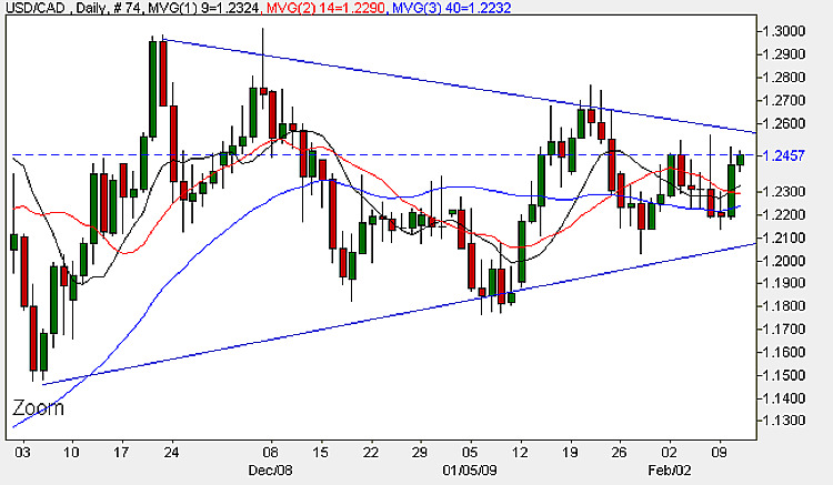 USD to CAD - Daily Candle Chart 11th February 2009