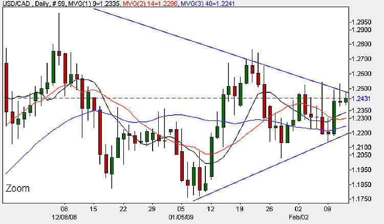 USD to CAD - Daily Candle Chart 12th February 2009