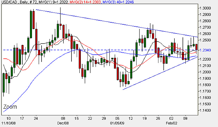 USD to CAD - Daily Candle Chart 13th February 2009