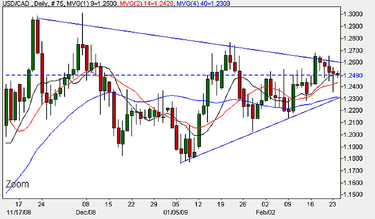 USD/CAD - Daily Candle Chart 24th February 2009