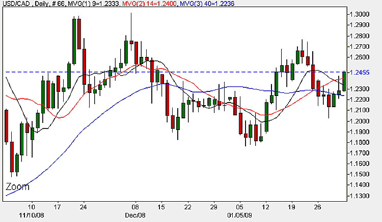 USD CAD Daily Candle Chart - February 3rd 2009