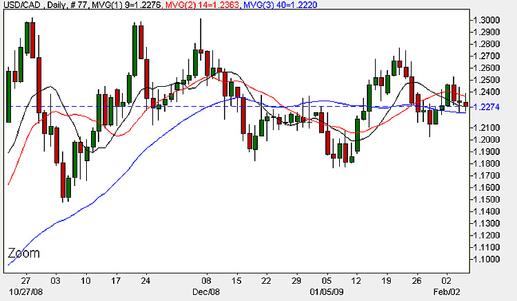 USD to CAD - Daily Candle Chart 5th February 2009